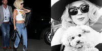 5 arrested in connection with shooting of Lady Gaga's dog walker